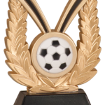 New Soccer Trophy